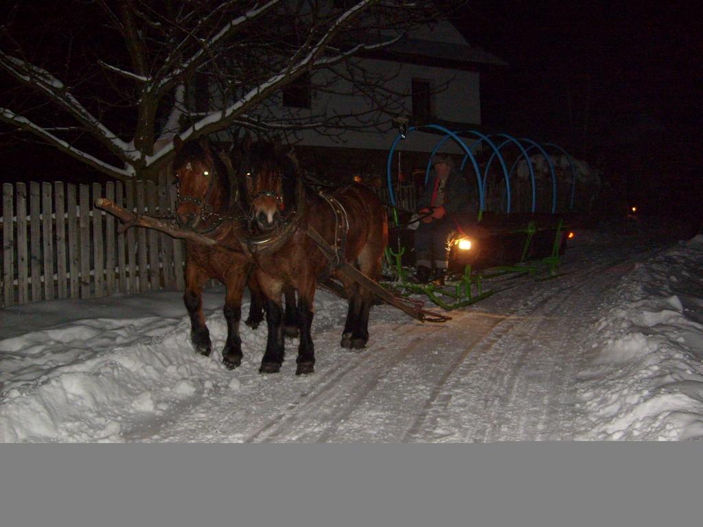 Zaprzęg konny, kulig zimowy