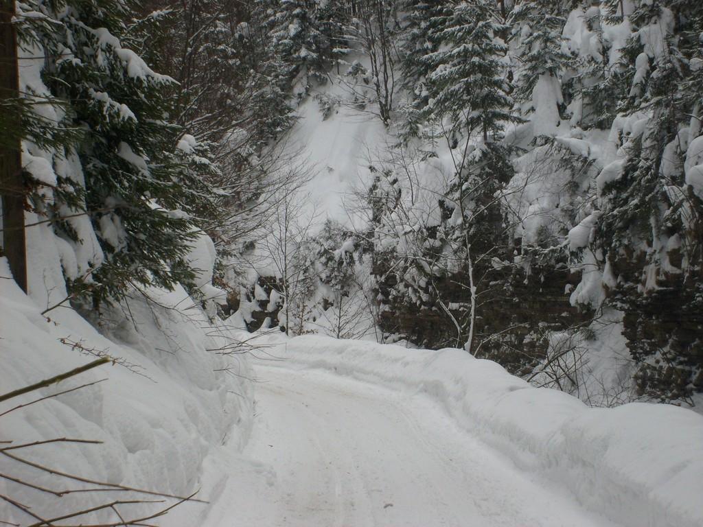 Droga w dolinie Białej Wisełki