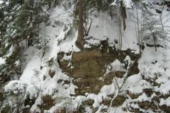 Potok Białej Wisełki