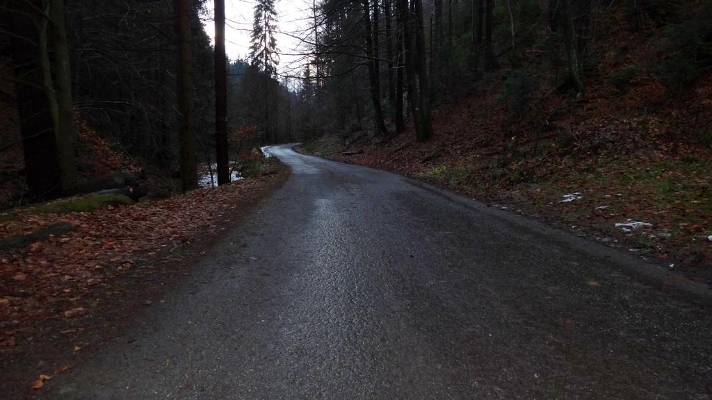 Droga w dolinie Białej Wiselki